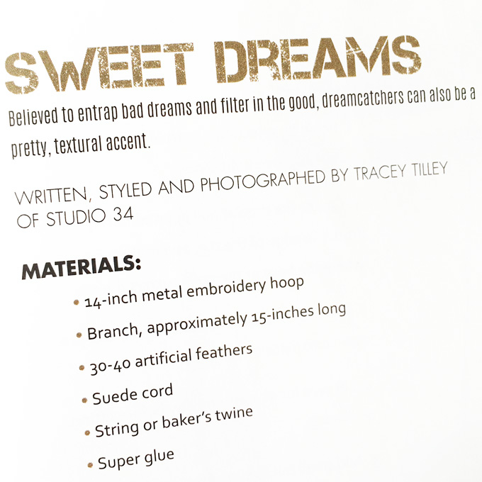 dreamcatchermag2